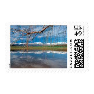 Winter Reflections. Ceres, Boland District Postage