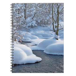 Winter river with snow spiral notebooks