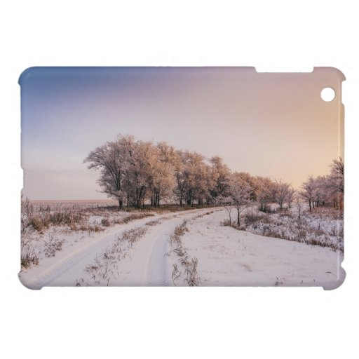 Winter road along trees in sunset light case for the iPad mini