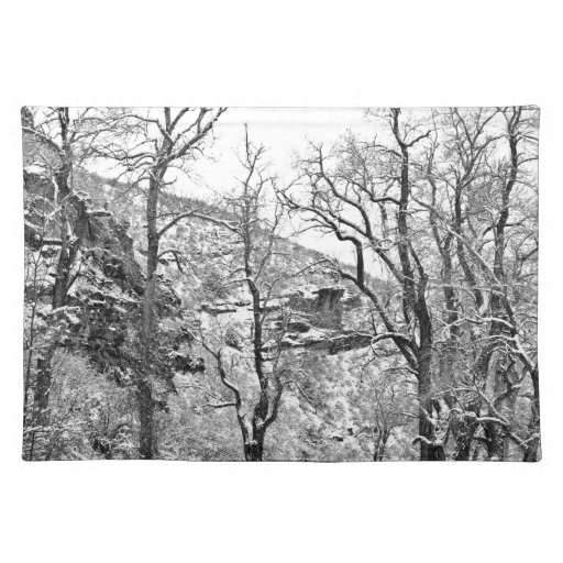 Winter Road Black and White Place Mat