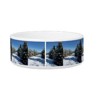 Winter Road Bowl