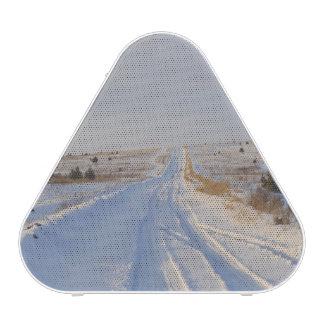 Winter Road in the Fields Bluetooth Speaker
