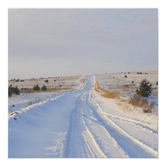 Winter Road in the Fields Card