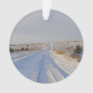Winter Road in the Fields Ornament