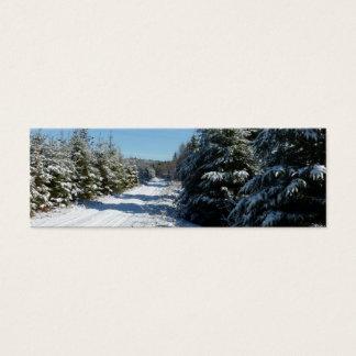 Winter Road Mini Business Card