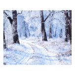 Winter Road Photo Print