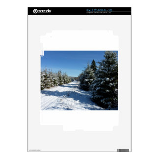 Winter Road Skins For The iPad 2