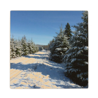 Winter Road Wood Coaster