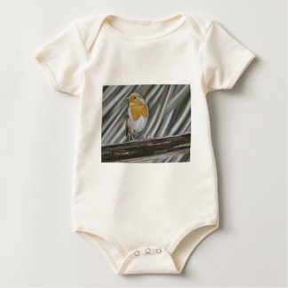 Winter Robin Baby Bodysuit