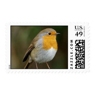 Winter Robin Postage