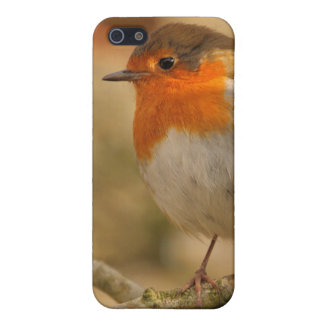 Winter Robin Profile iPhone SE/5/5s Case