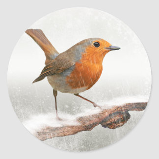Winter Robin Redbreast Classic Round Sticker