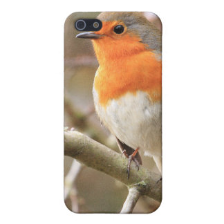 Winter Robin Redbreast Cover For iPhone SE/5/5s