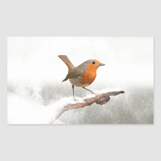 Winter Robin Redbreast Rectangular Sticker