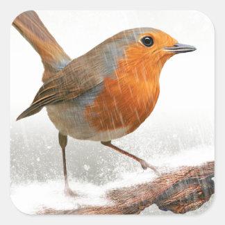 Winter Robin Redbreast Square Sticker