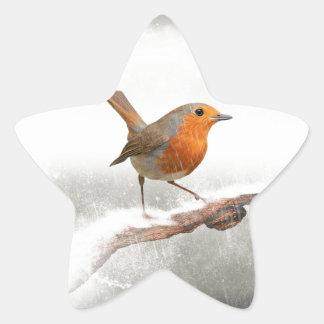 Winter Robin Redbreast Star Sticker