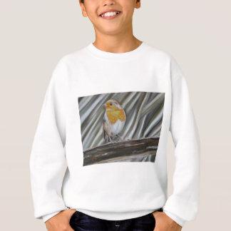 Winter Robin Sweatshirt