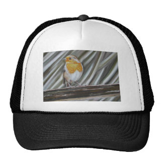 Winter Robin Trucker Hat