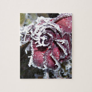 Winter Roses Jigsaw Puzzles
