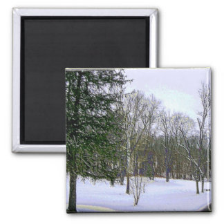 Winter Scape with Yellow Border Magnets