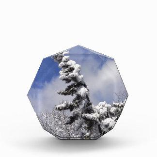 winter scene acrylic award