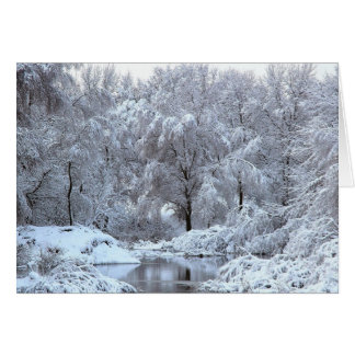 winter scene Blank Photo Greeting Cards