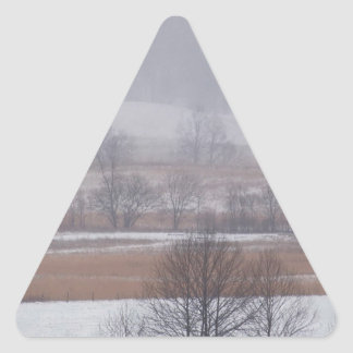 Winter Scene Cades Cove Great Smoky Mountains Triangle Sticker