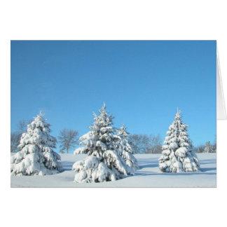 Winter Scene Greeting Cards