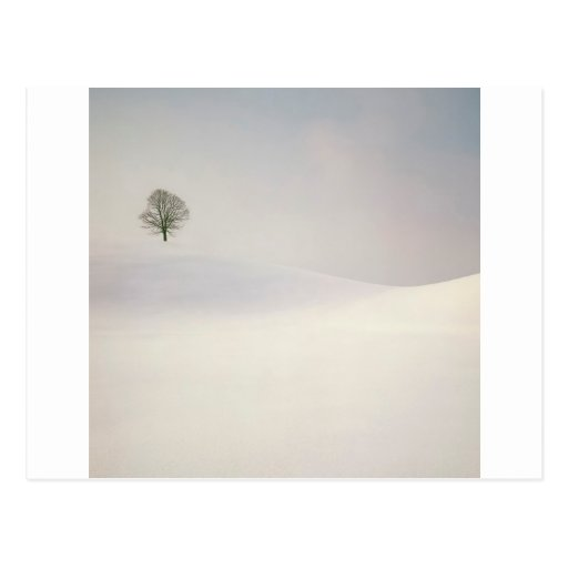 Winter Scene Peaceful Season Switzerland Postcard