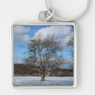 Winter Scene photo keyring Silver-Colored Square Keychain