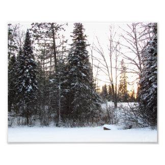 Winter Scene Photo Print