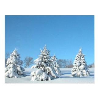 Winter Scene Post Cards