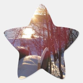 Winter Scene Star Sticker