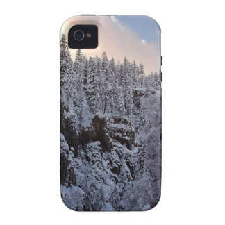 Winter Scene Total Whiteout iPhone 4/4S Cases