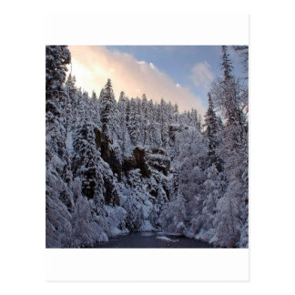 Winter Scene Total Whiteout Post Card
