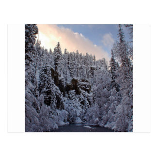 Winter Scene Total Whiteout Post Cards