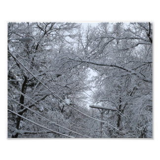 Winter Scene, West Roxbury, MA, 8x10 Photo Print