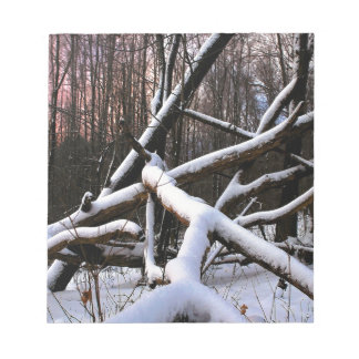Winter Scene White Powder Woods Scratch Pad