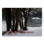 Winter Scenery Christmas Cards