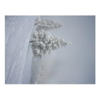 Winter Scenery Postcard