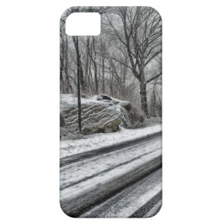 Winter scenery road Iphone case 5/5S
