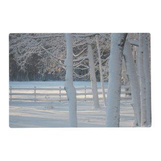 Winter Scenes Placemat