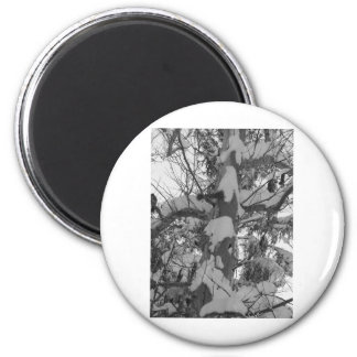 winter scenes - snow tree photo abstract 2 inch round magnet
