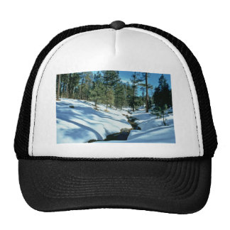 Winter Scenic Trucker Hat