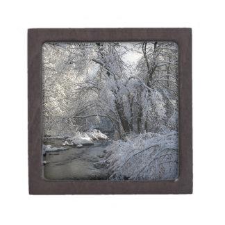 Winter Scenic Landscape Jewelry Box
