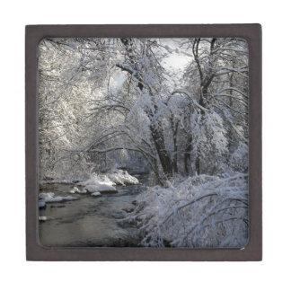 Winter Scenic Landscape Keepsake Box