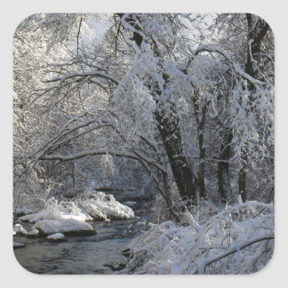 Winter Scenic Landscape Square Sticker
