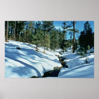 Winter Scenic Posters