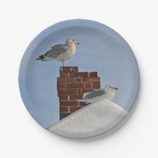 Winter Seashore Paper Plate