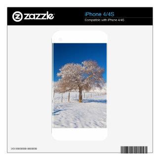 Winter Season on the Plains Portrait iPhone 4 Decals